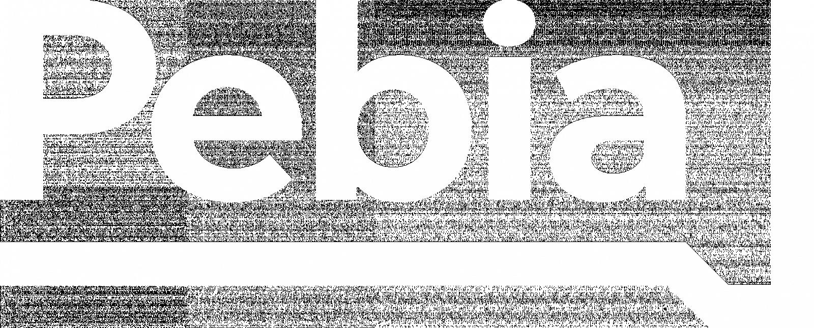logo pebia_duze_white.png [30.71 KB]